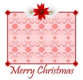 Tarjeta de Navidad del Poinsettia Fotografía de archivo libre de regalías