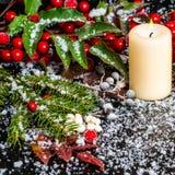 Tarjeta de Navidad del saludo de las ramas imperecederas, hojas rojas, baya Imagenes de archivo
