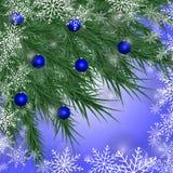 Tarjeta de Navidad Fondo del invierno con las ramas y el azul spruce Foto de archivo libre de regalías