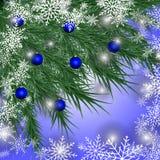 Tarjeta de Navidad Fondo del invierno con las ramas y el azul spruce Fotos de archivo