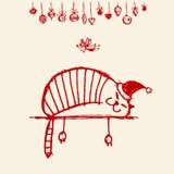 Tarjeta de Navidad, gato divertido de santa para su diseño Imágenes de archivo libres de regalías
