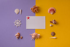 Tarjeta de papel adornada con las conchas marinas alrededor Imagen de archivo