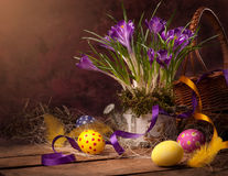 Tarjeta de pascua con las flores del resorte de los huevos Imagen de archivo libre de regalías
