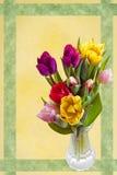 Tarjeta de pascua con los tulipanes Fotografía de archivo libre de regalías