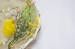 Tarjeta de pascua feliz, Imágenes de archivo libres de regalías