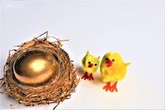 Tarjeta de pascua feliz Huevo de Pascua de oro fotos de archivo