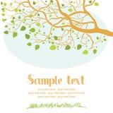 Tarjeta del árbol de la primavera Foto de archivo libre de regalías