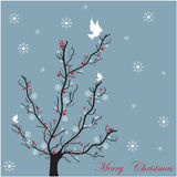 Tarjeta del árbol del invierno Fotografía de archivo