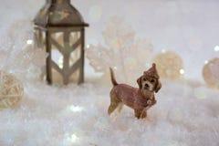 Tarjeta del Año Nuevo con el perro de juguete en un bosque de hadas en fondo del invierno Imagen de archivo