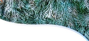 Tarjeta del Año Nuevo de la Navidad Fotos de archivo