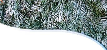 Tarjeta del Año Nuevo de la Navidad Foto de archivo libre de regalías