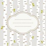 Tarjeta del abedul Imagen de archivo libre de regalías
