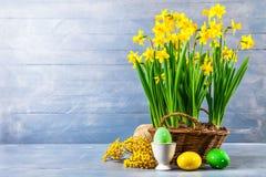 Tarjeta del día de fiesta de Pascua con la flor amarilla de la primavera de los huevos Fotografía de archivo