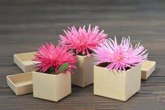 Tarjeta del día de madres con las flores en cajas de regalo fotografía de archivo libre de regalías