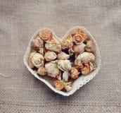 Tarjeta del día de San Valentín de la flor Fotografía de archivo