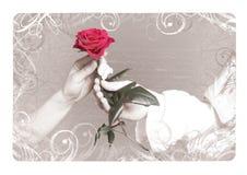 Tarjeta del día de San Valentín Rose Imagenes de archivo