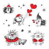 Tarjeta del día de tarjetas del día de San Valentín con los erizos y los corazones Fotografía de archivo