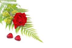 Tarjeta del día de San Valentín 5 Imagen de archivo libre de regalías