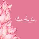 Tarjeta del diseño de los pétalos de Lotus Imagen de archivo libre de regalías