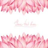 Tarjeta del diseño de los pétalos de Lotus Foto de archivo libre de regalías