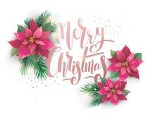 Tarjeta del diseño del vector de la poinsetia de la Navidad ilustración del vector