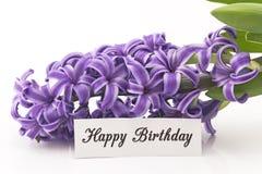 Tarjeta del feliz cumpleaños con el jacinto Imagen de archivo
