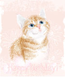 Tarjeta del feliz cumpleaños con el pequeño gatito Imágenes de archivo libres de regalías