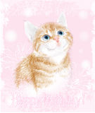 Tarjeta del feliz cumpleaños con el pequeño gatito Fotografía de archivo libre de regalías