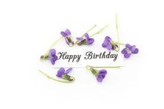 Tarjeta del feliz cumpleaños con las violetas Foto de archivo