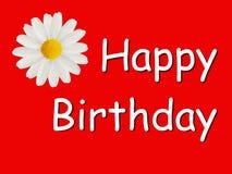 Tarjeta del feliz cumpleaños con una margarita Imagen de archivo