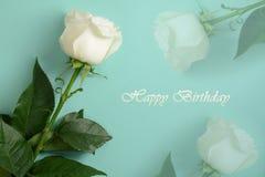 Tarjeta del feliz cumpleaños Rosa del blanco en fondo de la turquesa Fotos de archivo