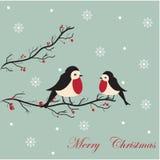 Tarjeta del fondo de la Feliz Navidad Fotos de archivo
