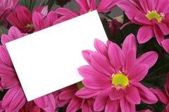 Tarjeta del regalo y flores rosadas imagenes de archivo
