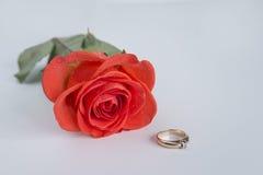 Tarjeta del `s de la tarjeta del día de San Valentín Foto de archivo libre de regalías