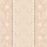 Tarjeta del saludo o de la invitación de la plantilla con la tela delicada del cordón Fondo ligero Imagen de archivo libre de regalías
