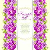 Tarjeta del vector con las peonías rosadas Imagen de archivo