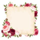 Tarjeta del vector con las rosas rojas y rosadas Imagen de archivo libre de regalías