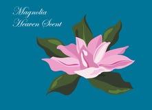 Tarjeta del vector del olor del cielo de la magnolia stock de ilustración
