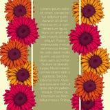Tarjeta del vintage con colores amarillos y anaranjados del rosa del gerbera de las flores Imágenes de archivo libres de regalías