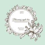 Tarjeta del vintage con las flores del jardín Flores dibujadas mano del manzano Imagenes de archivo