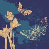 Tarjeta del vintage con las mariposas y los tulipanes Imagenes de archivo