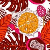 Tarjeta del vintage de las frutas tropicales Fotografía de archivo