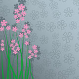 Tarjeta delicada con las flores rosadas y lugar para el texto Foto de archivo libre de regalías