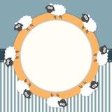 Tarjeta divertida con las ovejas y las rayas Imagen de archivo