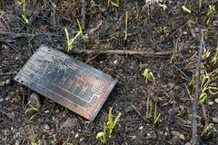 tarjeta electrónica Contaminación ambiental Foto de archivo