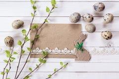 Tarjeta en blanco con la puntilla de los árboles de abedul con las hojas jovenes, codornices eg. Imagenes de archivo