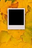 Tarjeta en blanco de la foto Imagen de archivo libre de regalías