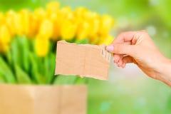 Tarjeta en blanco en mano femenina Imágenes de archivo libres de regalías