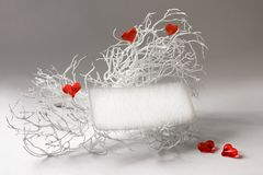 Tarjeta en blanco en una ramificación blanca con los corazones Imágenes de archivo libres de regalías