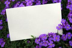 Tarjeta en blanco entre las flores Foto de archivo